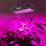 600W LED Grow Light with Bloom and Veg
