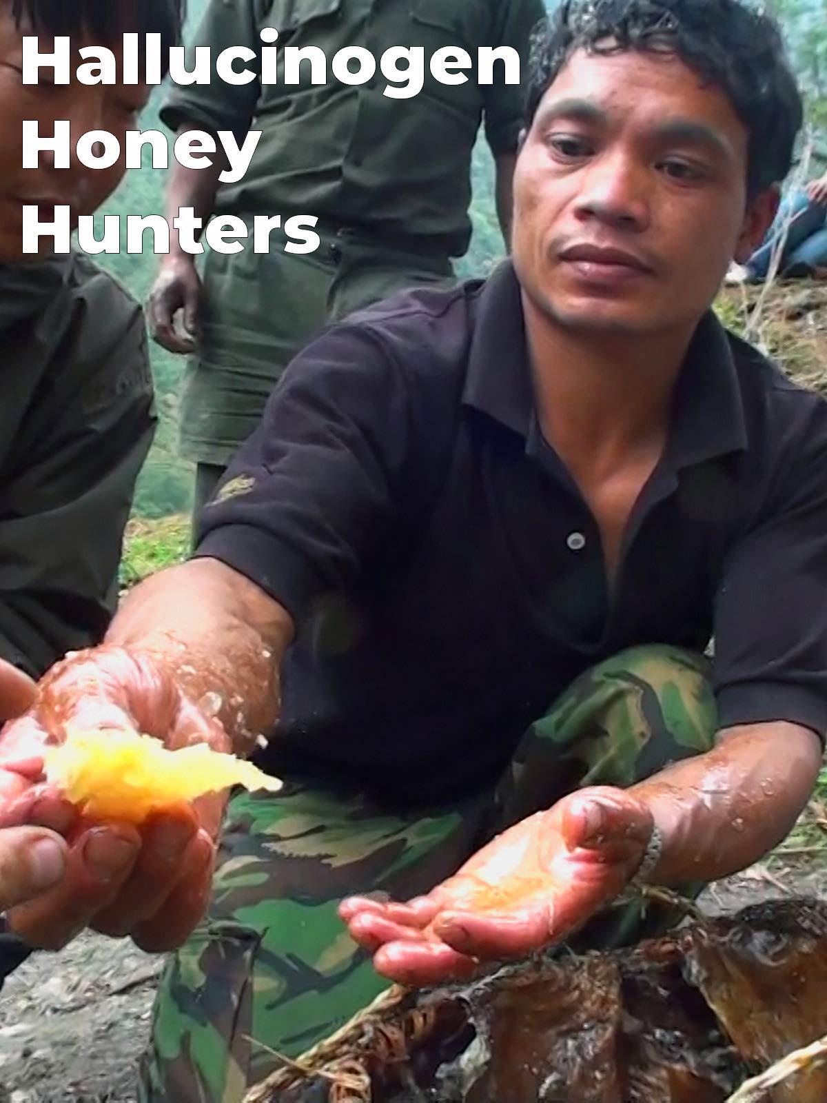 Hallucinogen Honey Hunters on Amazon Prime Video UK