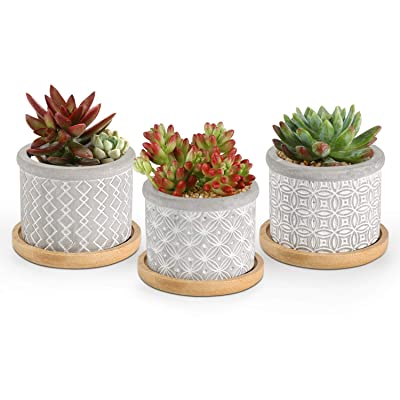 T4U 2.5 Inch Cement Succulent Planter Pot with Bamboo Tray Set of 3, Small Grey Concrete Pot Cactus Plant Container Herb Window Box Decoration for Home Office Gardening Birthday: Garden & Outdoor