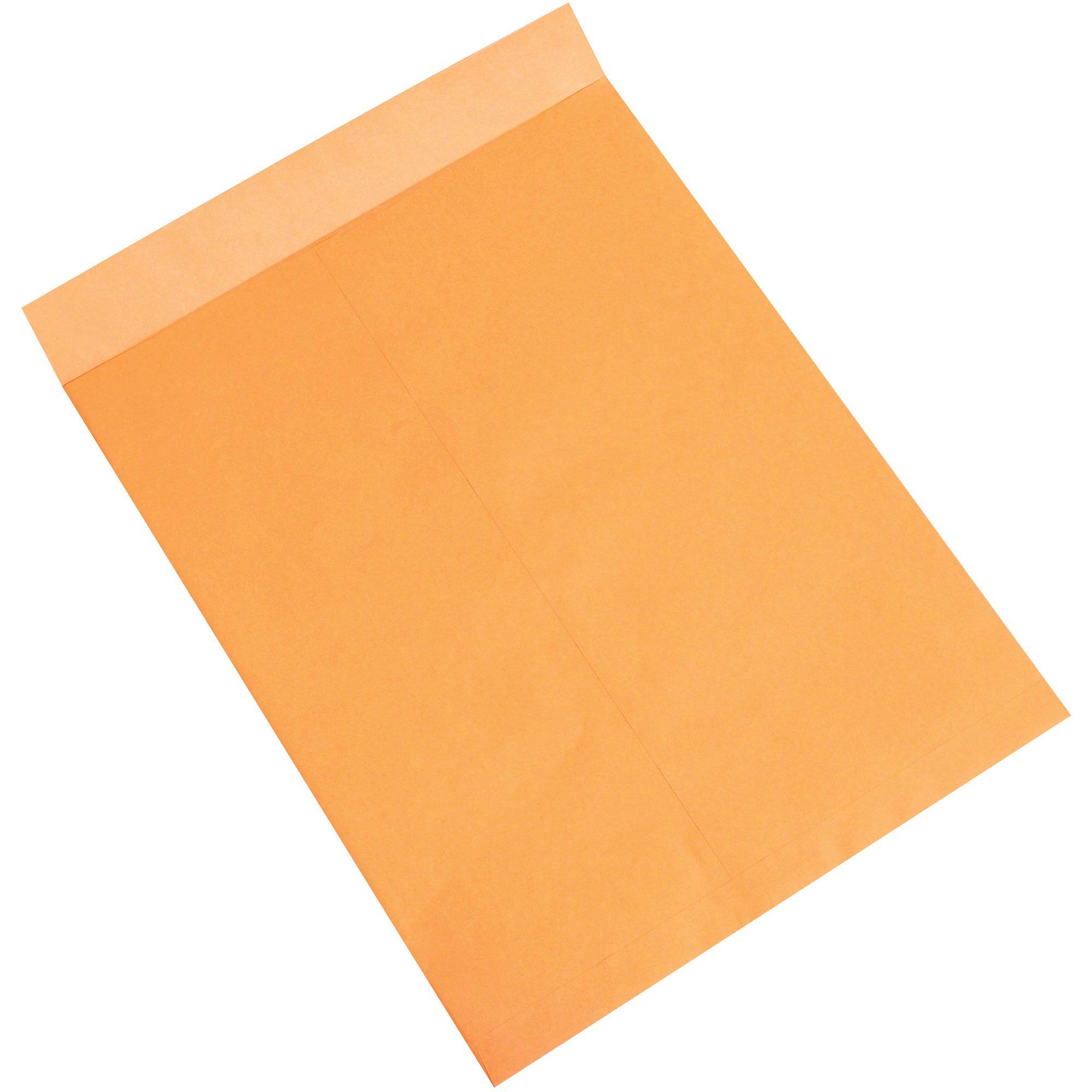 Aviditi EN1085 Jumbo Envelopes, 18'' x 23'', Kraft (Pack of 100)