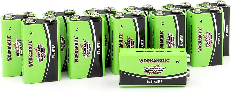 Interstate Batteries 9 Volt All-Purpose Alkaline Battery 12 Pack DRY0196 Workaholic