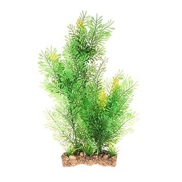Daxibb Mimosa de plantas acuáticas con base estable para acuario: Amazon.es: Hogar