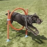 Lixit Jump Hoop Dog Agility Starter Equipment