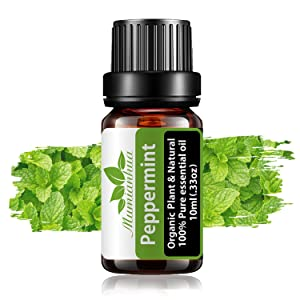 Peppermint Essential Oil Single, 0.33oz Pure Essential Oils for Diffusers for Home Aromatherapy, Organic Plant Essential Oils for Skin Care, Aromatherapy Oils for Humidifier