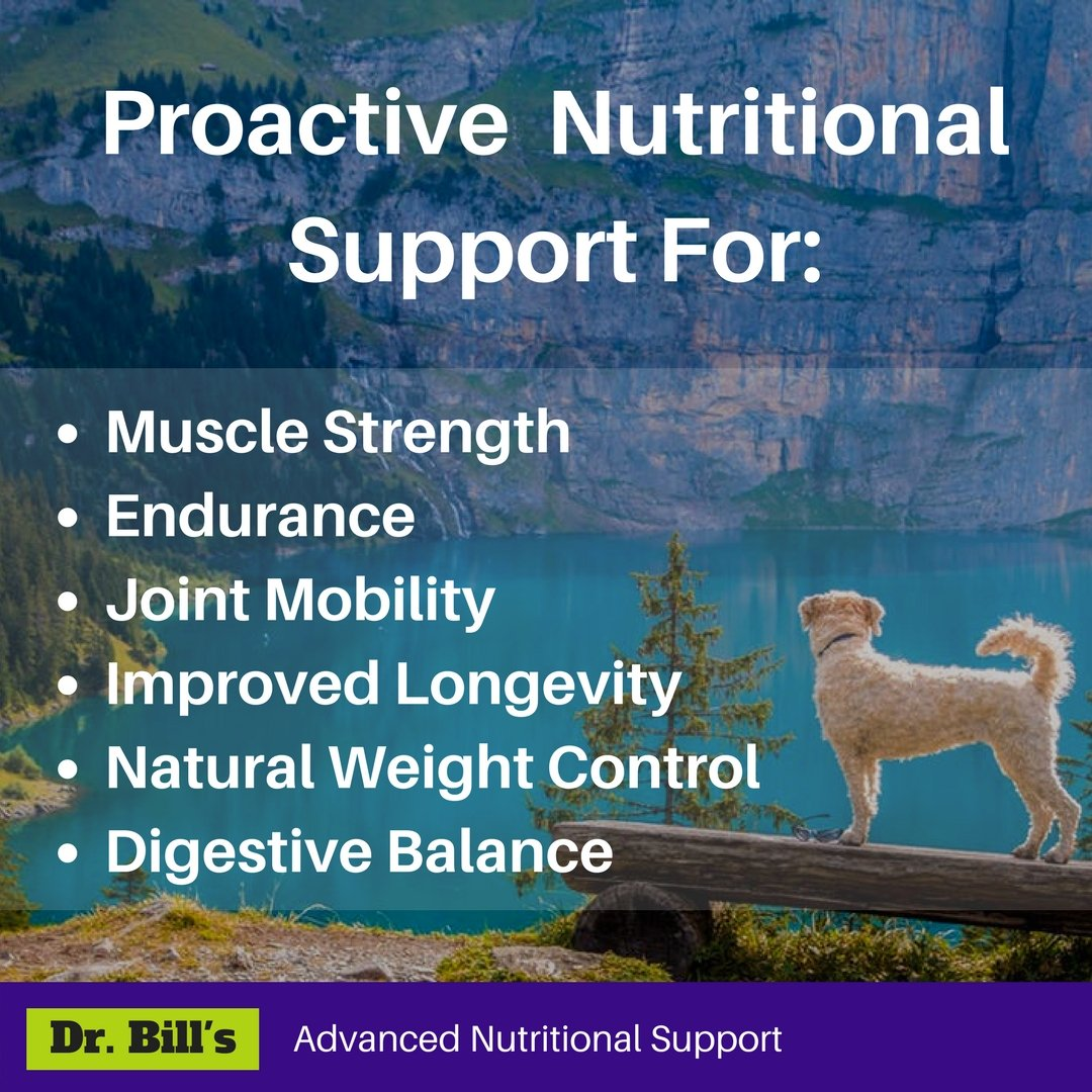 Dr. Bill's Canine Ultimate Fitness & Health | Pet Supplement | Complete Multivitamin for Dogs | Includes CoQ10, Vitamins A, D, E, K, Omega 3, Biotin, Collagen, Enzyme Blend | 680 Grams