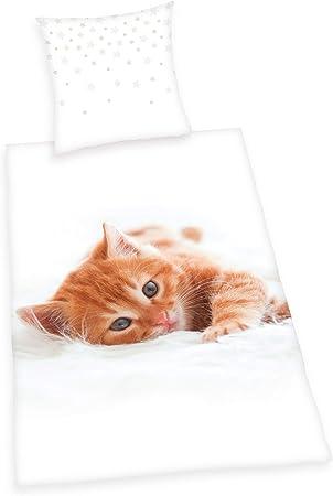 Copripiumino Singolo Animali.Herding Young Collection Gatti Set Di Set Copripiumino Singolo E