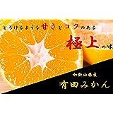 和歌山県産 有田みかん 高糖度でとろける美味しさ 極上の味 のし対応致します (10kg)