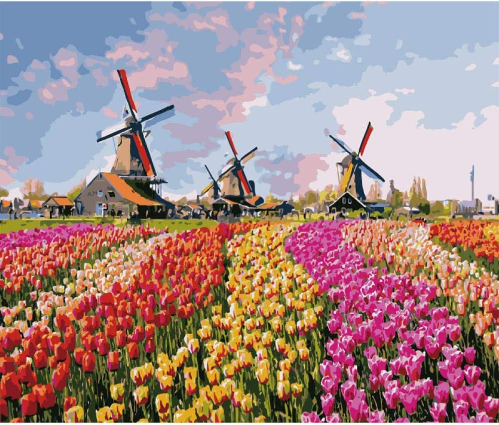 CHXFit Pintura por números DIY Molino de Viento holandés Paisaje Arte de la Pared Pintura de Imagen para la decoración de la boda-50 * 65cm