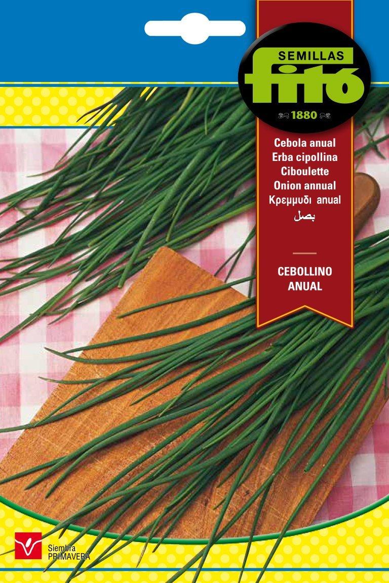 Semillas Fitó 3084 - Cebollino Anual: Amazon.es: Jardín