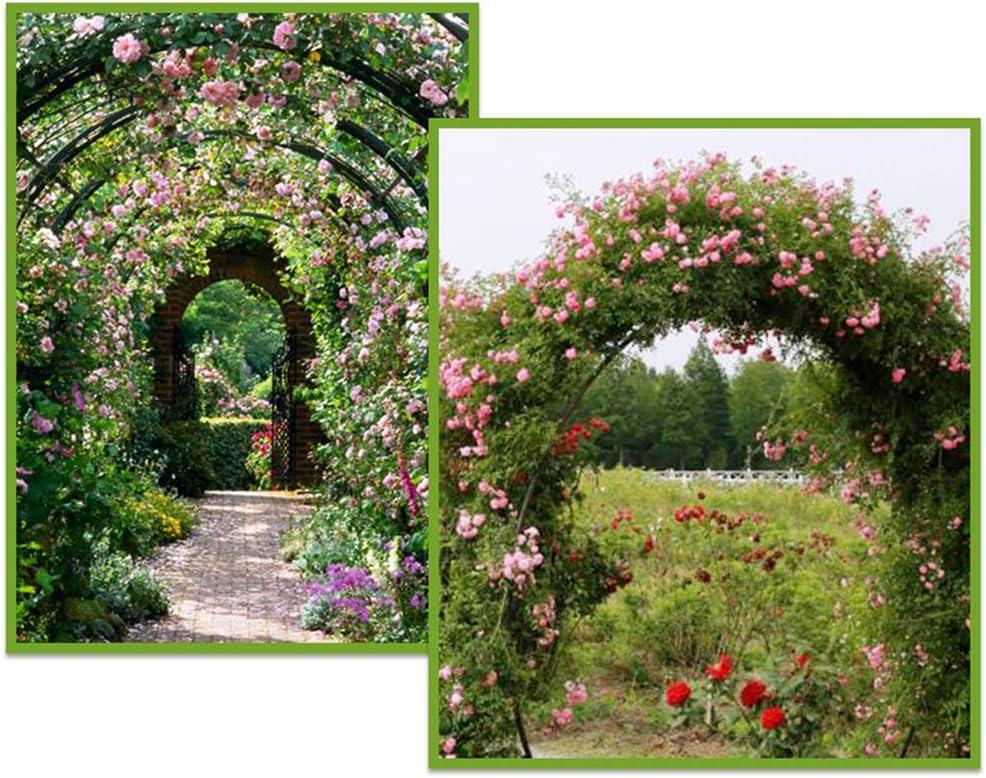 XLOO Arco de jardín con Enrejado de pérgola de jardín con Maceta, de Varios tamaños, Libre de ensamblar, para Varias Plantas trepadoras Rosas Enredaderas Decoración de Fiesta Nupcial Cenador de pérg: Amazon.es: