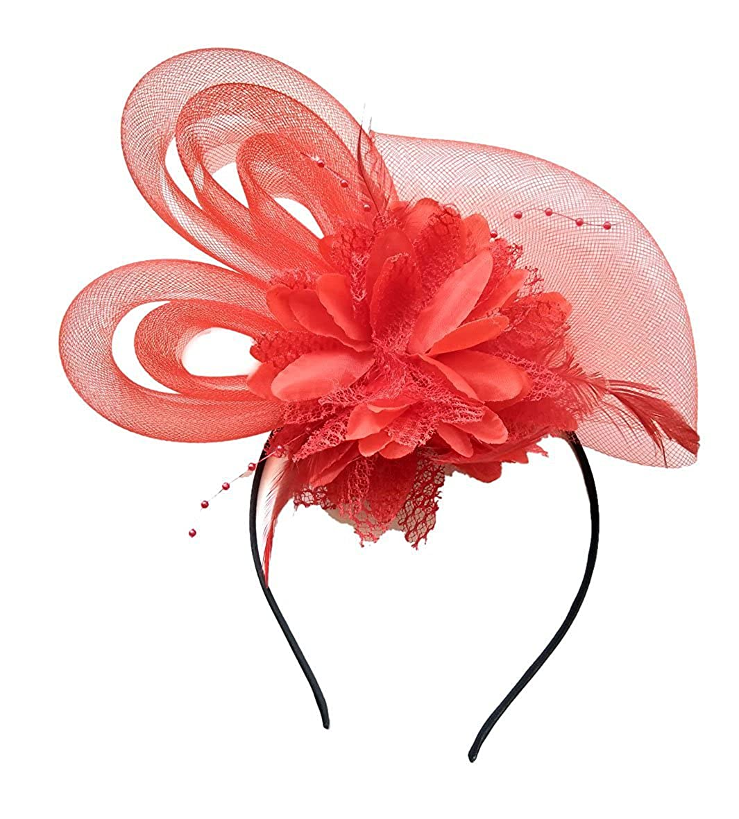 Edith qi Women's Hats Celebration/Cocktail/Party/Wedding Feather Fascinators Hair Clip EH-005-Black