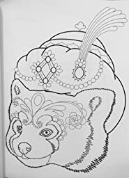 Dapper animals coloring book coloring is fun Dapper animals coloring book