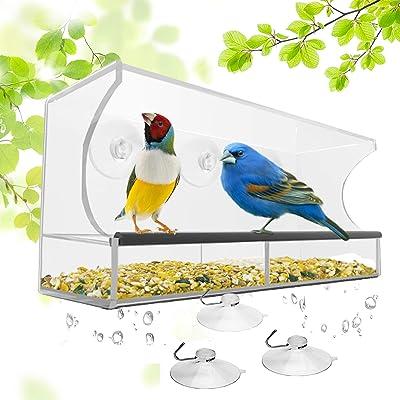 Top Ten Very Best Screen Chicken windowsill bird feeder Feeders With Good Suction Servings Critiques