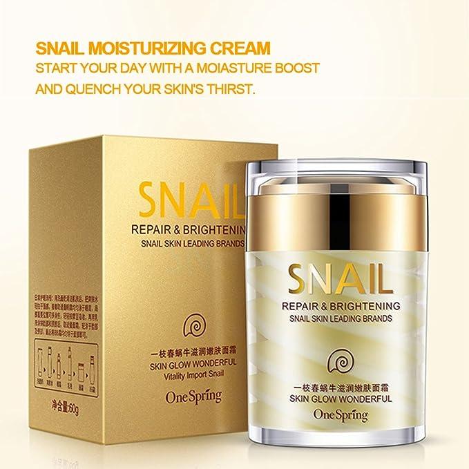 Crema Hidratante Caracol, Secreción Crema Nutritiva para la Piel Crema Facial Antienvejecimiento Cosmética: Amazon.es: Belleza