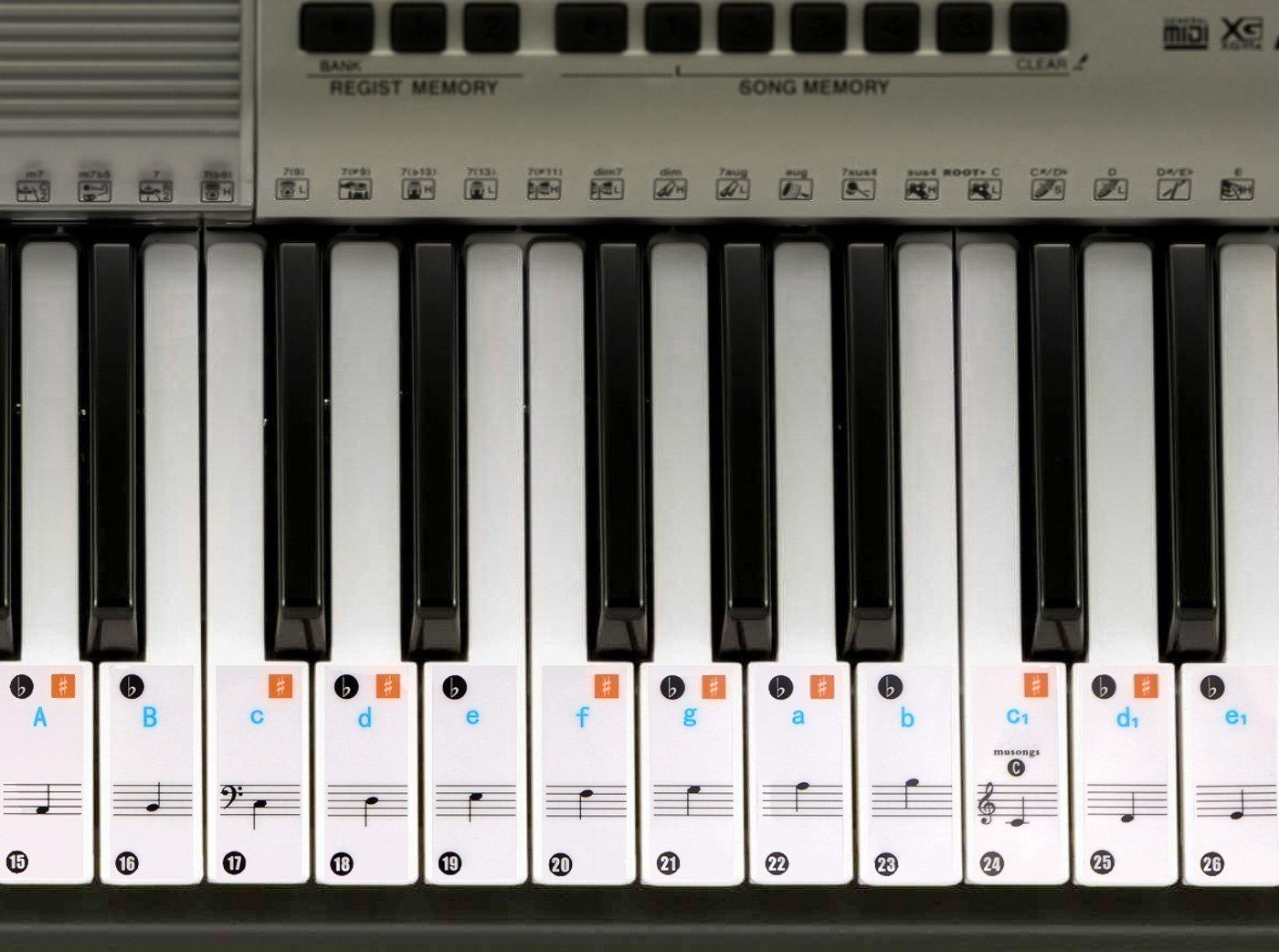 Piano adhesivo para 49 / 61/ 76 / 88 llave teclados – transparente y extraíble Vancool