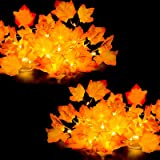 [2-Pack] Fall Decor for Home Thanksgiving Decorations Lighted Fall Garland 8.2ft 20 LED, Fall Decorations Thanksgiving…