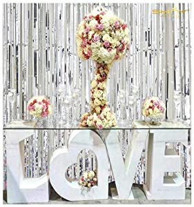 ShiDianYi Metallic Foil Fringe-Backdrops-Silver-6FTX8FT Tinsel Party/Window/Door Decorative Fringe Curtains(Pack of 2)