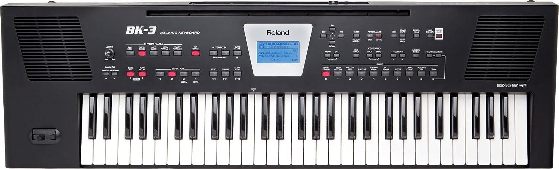 Roland 7.4061E+36 - Teclado electrónico (61 teclas, conector ...