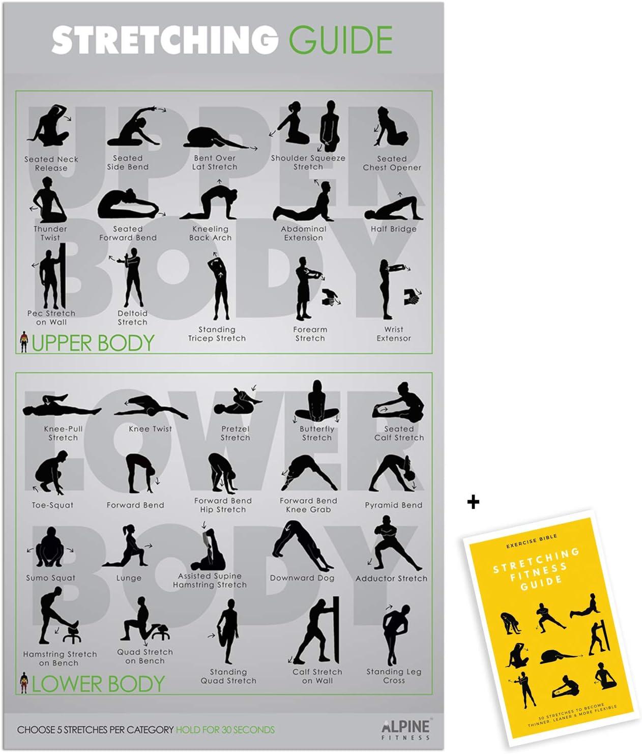 Ejercicio y Fitness Póster | Gimnasio planificador Laminado para un Gran Entrenamiento – Guía para Construir músculo & Fuerza