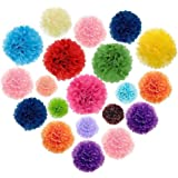 Tissue Paper Pom Poms20 Mixed 10inch8inch For Christmas Wedding Birthday Party Decorations Supplies
