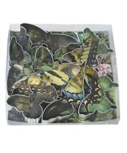 R&M International 1922 Butterfly Cookie Cutters, Assorted Sizes, 7-Piece Set