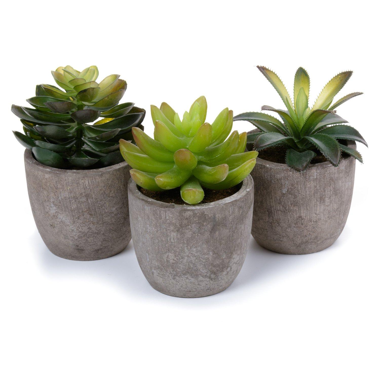 T4U Artificiale Serie di Piante Succulente Erba Decorativo in Plastica Collezione 1, Confezione da 3