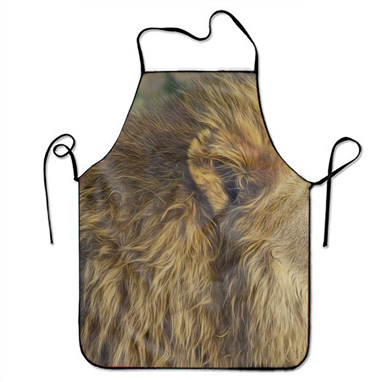 JONHBKD ノベルティ アニマル ハチドリ 鳥 ハチドリ 鳥 プリント 面白いキッチンエプロン Onesize yh_009_2819244  Animal Lion9 B07HBWWWR8