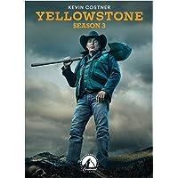 YELLOWSTONE-SEASON 3 (DVD/4 DISC)