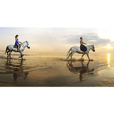Breathtaking Ride Experience on the Beach in the United Kingdom for Two - Tinggly Voucher/Gift Card in a Gift Box