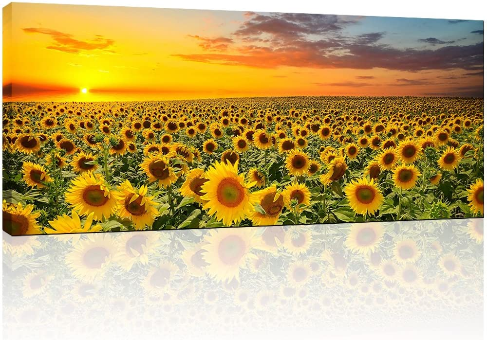 """Sunflower Canvas Wall Art Prints,Brilliant Sunflower Paintings Printed on Canvas,Framed and Stretched,Floral Home Wall Decor,Living Room,Office,Hotel Canvas Wall Art (20""""x48"""")"""