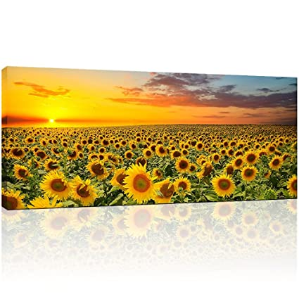 Amazon.com: Sunflower Canvas Wall Art Prints, Brilliant Sunflower ...