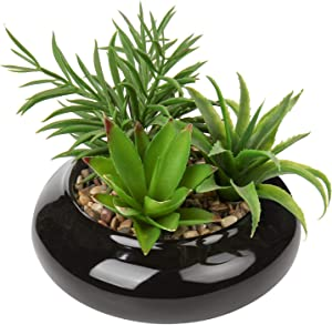 Artificial Succulent Plants Small Fake Desk Plant Realistic Faux Succulents in Black Ceramic Pots Succulent Decor for Home Office Bookshelf Bathroom