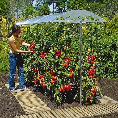 Beckmann KG PSN1 Schutzdach für Pflanzen Größe 1 100 x 112 cm
