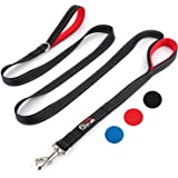 Primal Pet Gear Dog Leash 8ft Long - Traffic Padded Two Handle - Heavy Duty - Double Handles Lead for Control Safety…