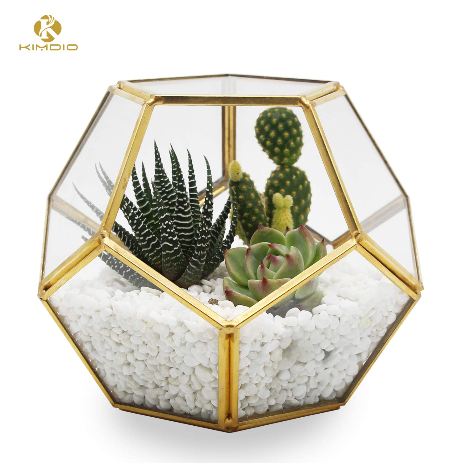 Kimdio Geometric Terrarium Ball Modern Plant Holder Display Box Indoor Opening Polyhedron Tabletop Window Sill Balcony Decorative Succulent Moss Flower Pot Containers DIY Gold