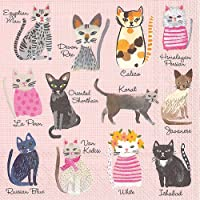 Boston International IHR Cocktail Beverage Paper Napkins, 5 x 5, Cool Cats, 20 Count