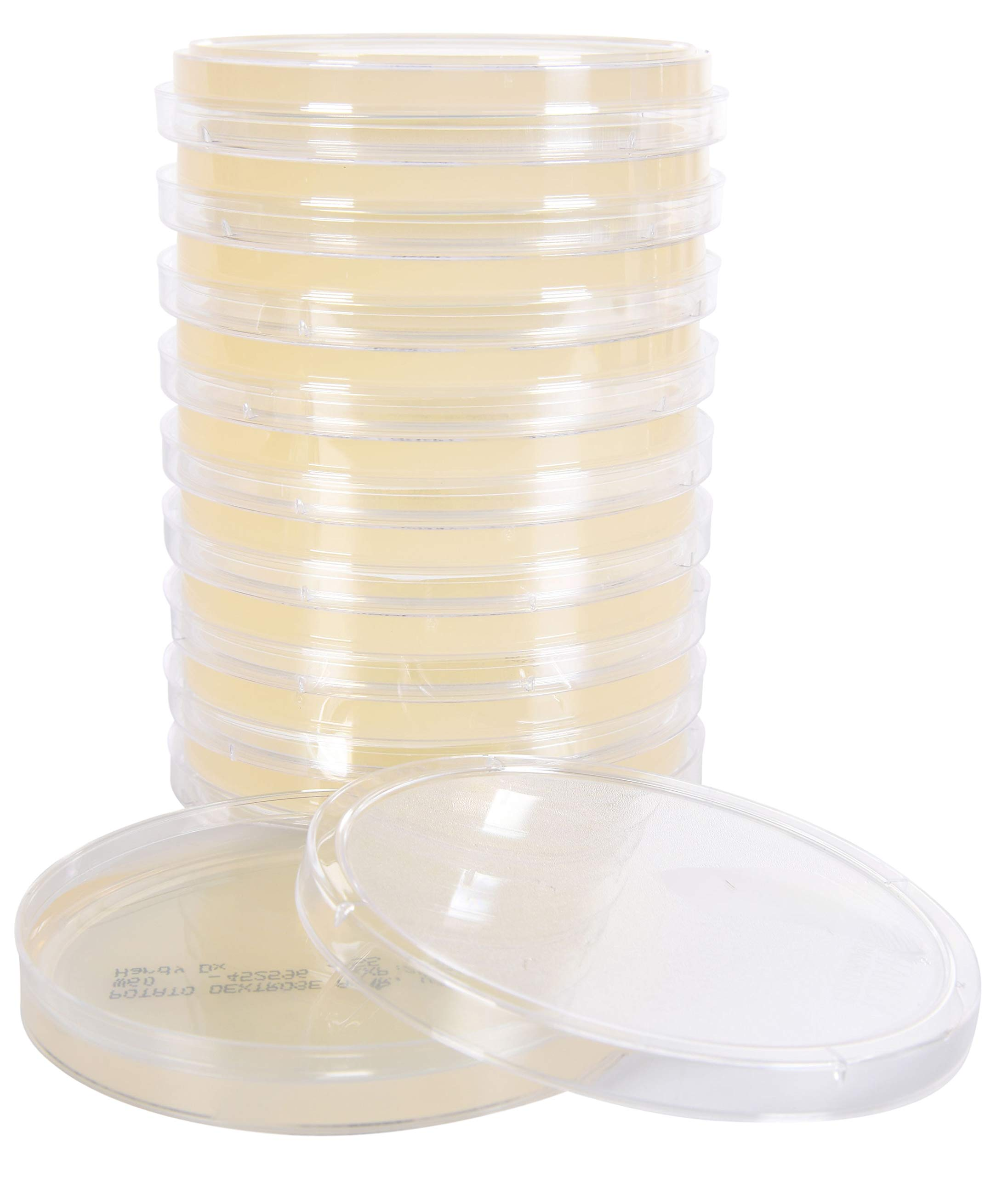 Order by The Package of 10 by Hardy Diagnostics R2A Agar 15x100mm Plate for The Cultivation of Bacteria from Water Samples