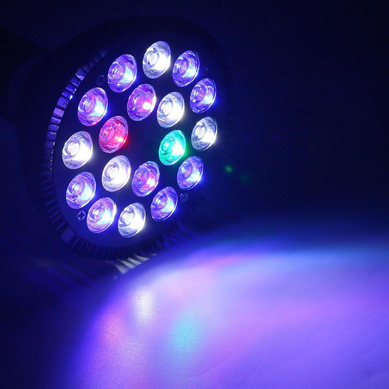 fish dp tank uk aquarium led novelty amazon artificial ae supplies light night lights gearmax lamp jellyfish lighting pet co