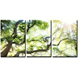 """wall26 - 3 Piece Canvas Wall Art - Big Tree with Sun Light - Modern Home Decor Stretched and Framed Ready to Hang - 24""""x36""""x3 Panels"""