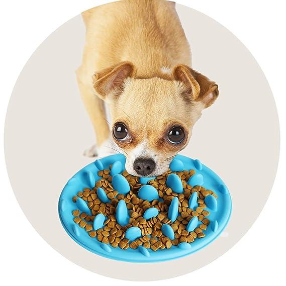 Meliya Mini comedero de perro lento comer perro cuenco interactivo de gel de sílice alimentador cuenco de comida - Comedero de comida para perros y gatos ...