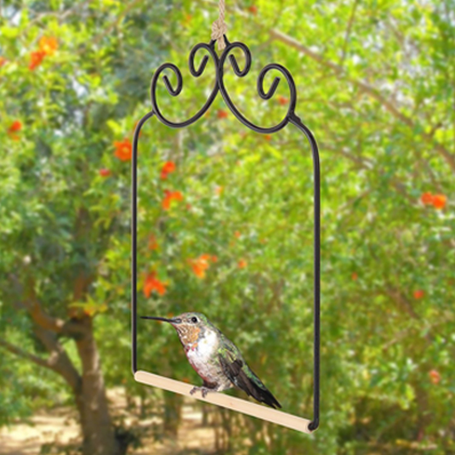 88204f64c6b92 Amazon.com   Home-X Hummingbird Swing. Metal Frame Hummingbird Swing with  Wooden Dowel   Garden   Outdoor