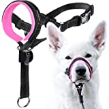 GoodBoy Dog Head Halter with Safety Strap - Stops Heavy Pulling On The Leash - Padded Headcollar for Small Medium and Large D