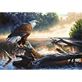 Dimensions Needlecrafts Paintworks Paint By Number, Eagle Hunter