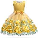 Girl Lace Dress Little Kids Party Wedding Dresses