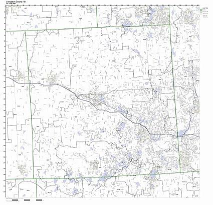 Amazon.com: Livingston County, Michigan MI ZIP Code Map Not ...
