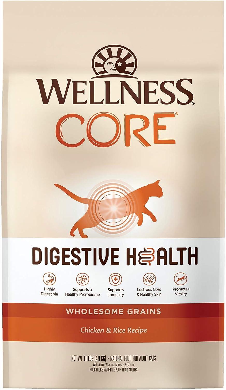 Wellness CORE Digestive Health Dry Cat Food