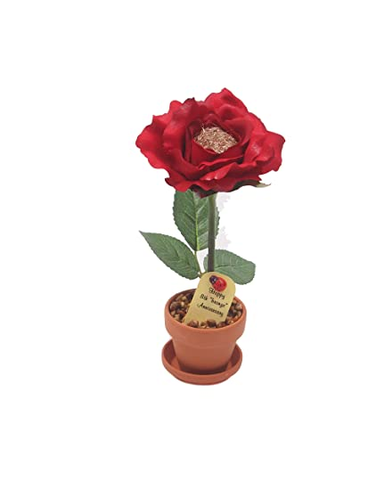 Amazon.com 8th Year Wedding Anniversary Gift Potted Bronze Desk Rose Perfect Present for Wife or Husband Home u0026 Kitchen  sc 1 st  Amazon.com & Amazon.com: 8th Year Wedding Anniversary Gift Potted Bronze Desk ...