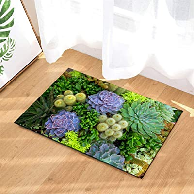 LIUH Aloe Cactus Green Succulent. Bathroom Mat: 40 X 60Cm / 15.7 X 23.6 Inches .Plus Velvet. Non-Slip. Easy to Clean. : Garden & Outdoor
