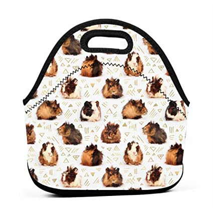 cdbb4ae07b14 Amazon.com - ONUPMIN Neoprene Guinea Pigs Portable Lunch Bag Carry ...