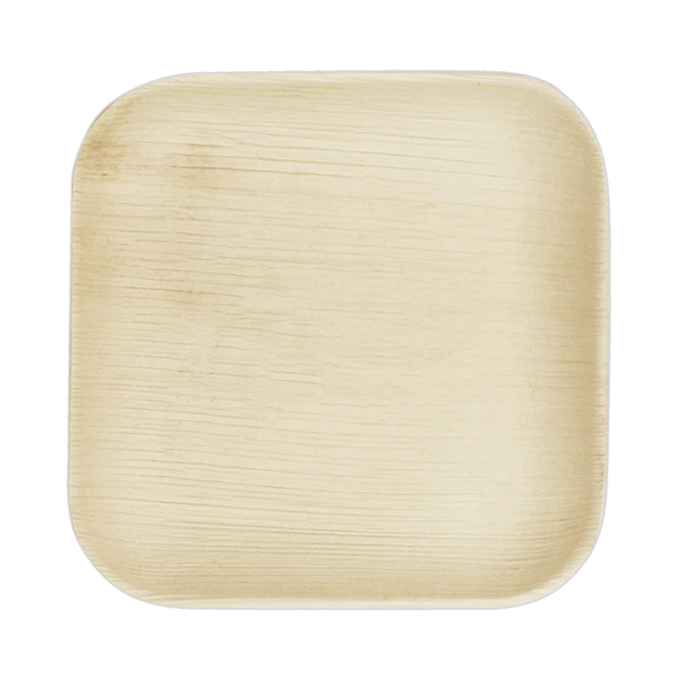 VerTerra 6'' x 6'' Square Palm Leaf Plates - Compostable Dinnerware - Appetizer and Dessert Plates (25 Pack)